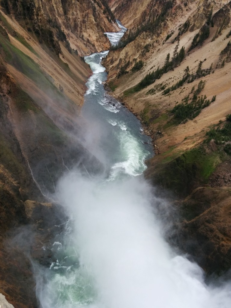 The Yellowstone River Lower Falls was spectacular.