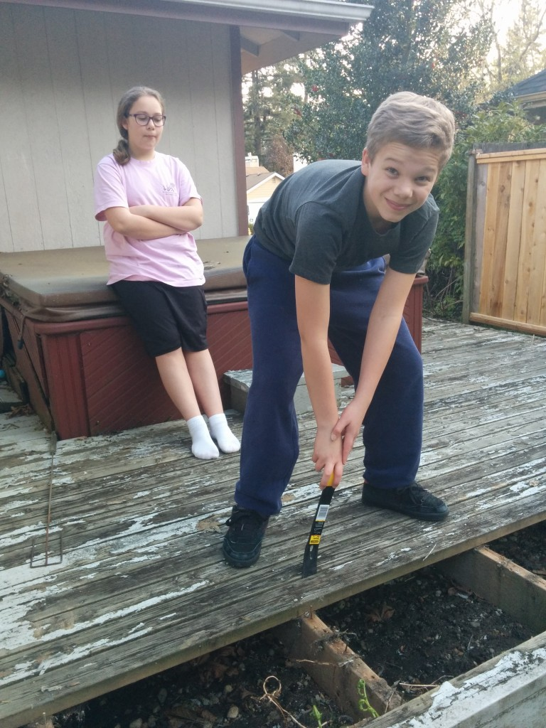 David mightily heaves on a rotten deck board ... while Sarah provides moral support.