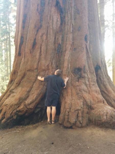 Tim - a tree hugger wannabe.
