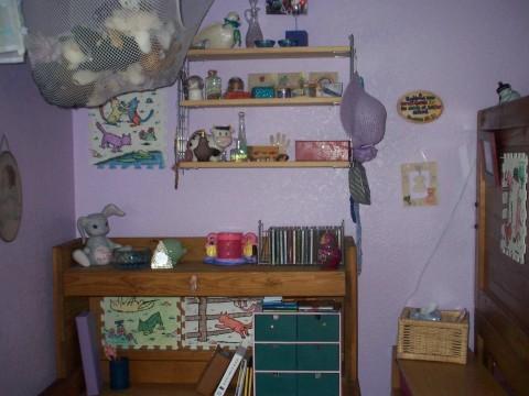 shelves and desk