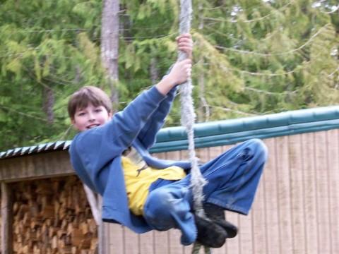 z swings