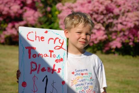 david's peddling tomatoes