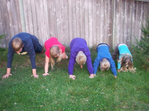 Push-up Five
